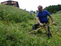 Kiwanis Club Bruneck hilft bei der Heuernte